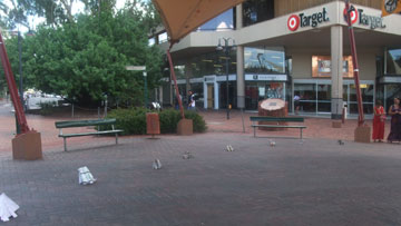 Sonja herds elephants in Todd mall, Alice Springs.
