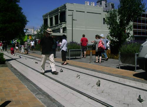 Sonja herds elephants in towards the Christchurch red zone, along the no longer in use, Cashel Street tramline.