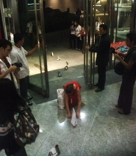 Sonja herds elephants into the Yuchengco Museum, Metro Manila, The Philippines.
