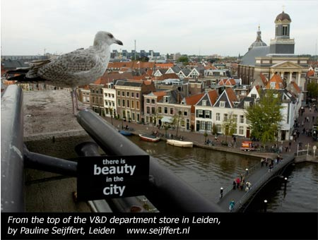 Photograph by Pauline Sieffert in the Beauty in the City - Leiden exhibition, October 2010